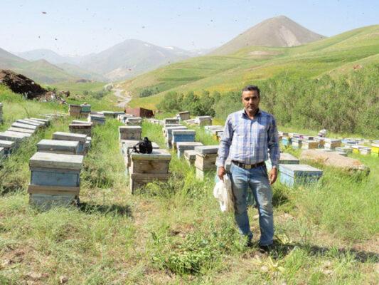 زنبوردار جلیل برهان