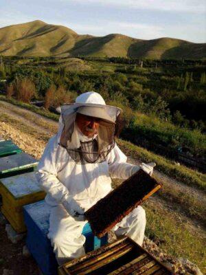 زنبورداری کرمانشاه
