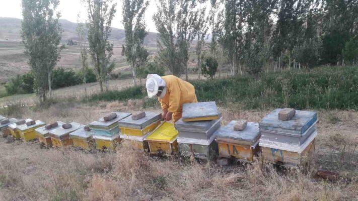 فروش عسل طبیعی خلخال