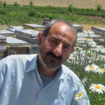 تاروردی ربیعی عسل زنبوردار خلخال