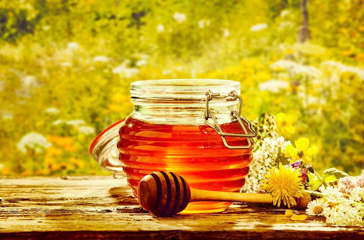 فواید و خواص عسل برای ورزشکاران و بدنسازان